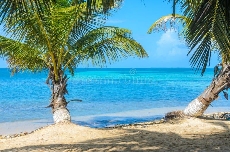 Καπνός Caye - μικρό τροπικό νησί στο σκόπελο εμποδίων με την παραλία παραδείσου, καραϊβική θάλασσα, Μπελίζ, Κεντρική Αμερική στοκ εικόνα με δικαίωμα ελεύθερης χρήσης