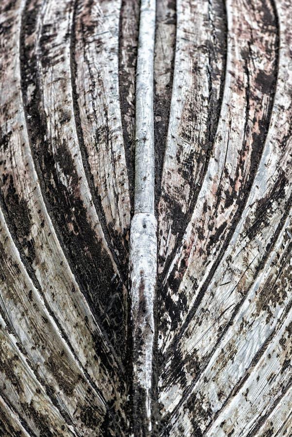 Καρίνα μιας ξύλινης βάρκας στοκ εικόνα