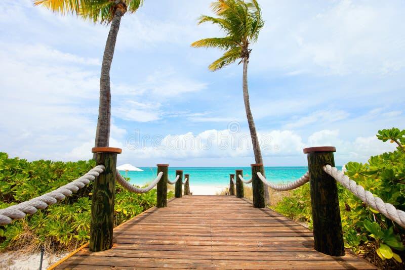 Καραϊβική παραλία στοκ εικόνες με δικαίωμα ελεύθερης χρήσης