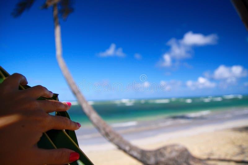 Download καραϊβική όψη ματιών παραλιών Στοκ Εικόνα - εικόνα από καραϊβικός, δημοκρατία: 13181055