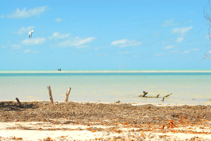 Καραϊβικός αθλητισμός νερού νησιών Holbox στοκ εικόνες