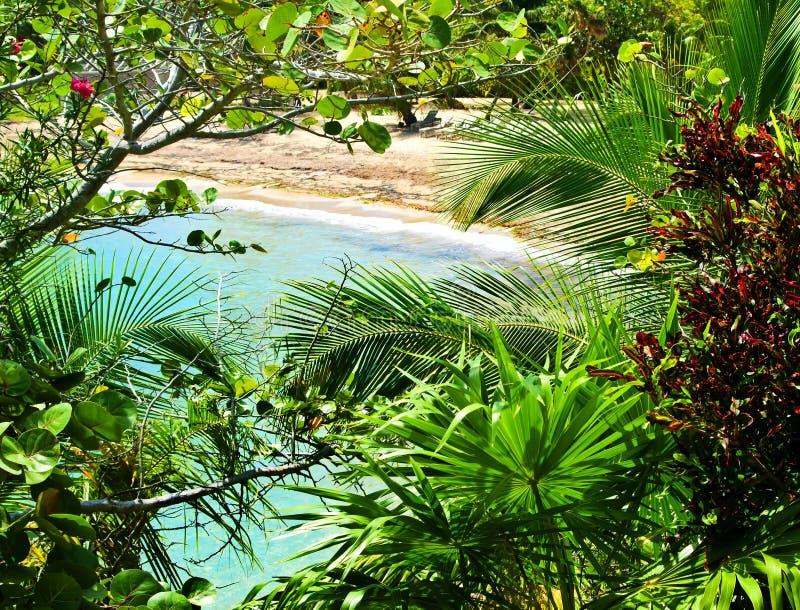 καραϊβικός παράδεισος τη στοκ εικόνα με δικαίωμα ελεύθερης χρήσης