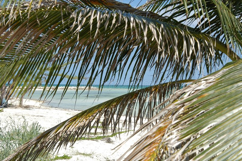 καραϊβικός παράδεισος στοκ φωτογραφία με δικαίωμα ελεύθερης χρήσης