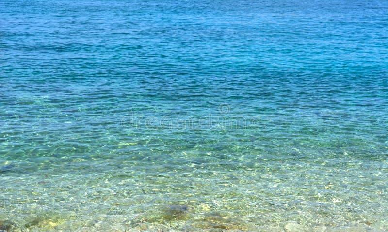 Καραϊβικό υπόβαθρο θερινών κυμάτων πυθμένων της θάλασσας Εξωτική φύση θαλάσσιου νερού Τροπικός παράδεισος νερού φύσης Διακοπές φύ στοκ φωτογραφία