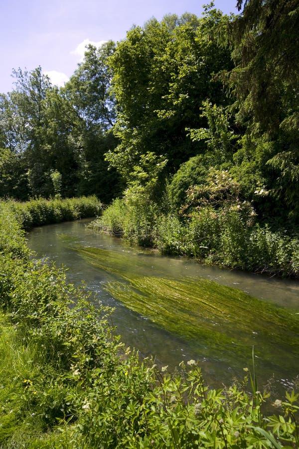 Καρδάρι ποταμών το καλοκαίρι σε Baunton στο Cotswolds στοκ εικόνες