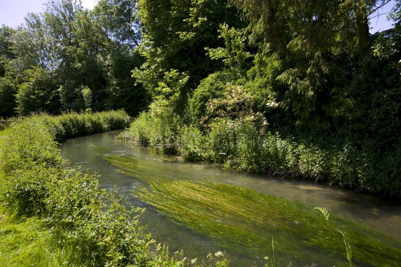 Καρδάρι ποταμών το καλοκαίρι σε Baunton στο Cotswolds στοκ φωτογραφία με δικαίωμα ελεύθερης χρήσης