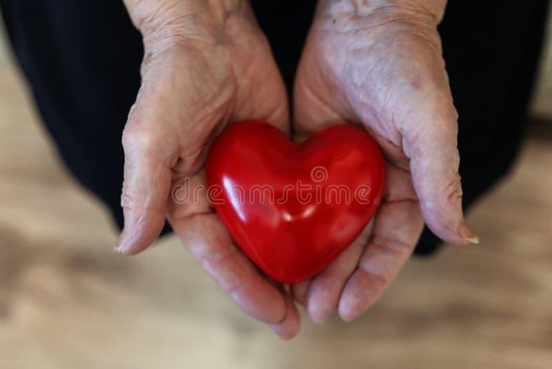 Καρδιά εκμετάλλευσης ηλικιωμένων γυναικών στοκ εικόνα