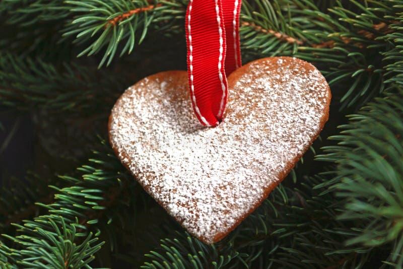 Καρδιά μελοψωμάτων με μια κόκκινη κορδέλλα που κρεμά σε ένα χριστουγεννιάτικο δέντρο στοκ φωτογραφία με δικαίωμα ελεύθερης χρήσης