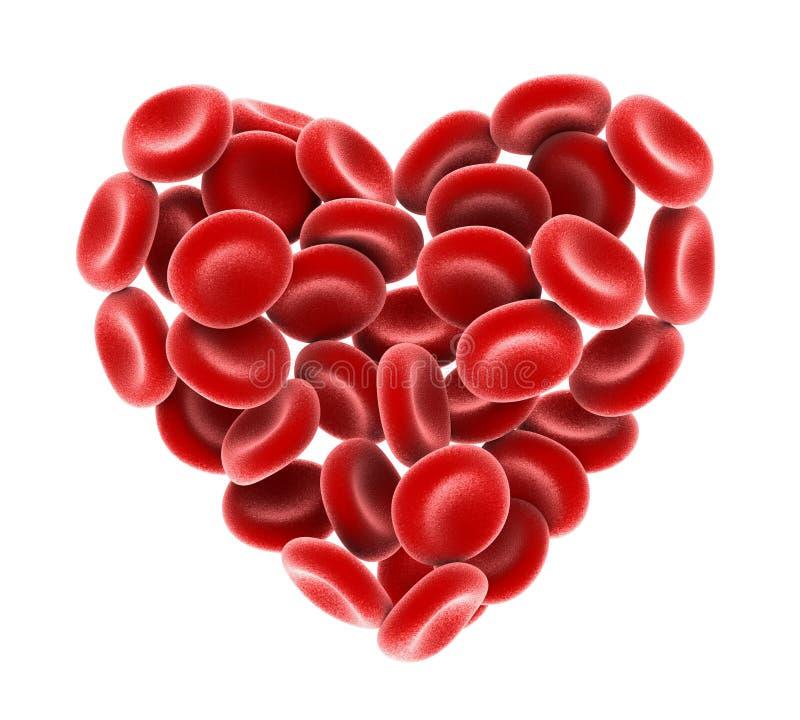 Καρδιά των κόκκινων κυττάρων αίματος που απομονώνονται διανυσματική απεικόνιση