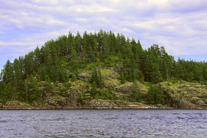 Καρελία: δάσος στους βράχους από τη λίμνη στοκ εικόνα