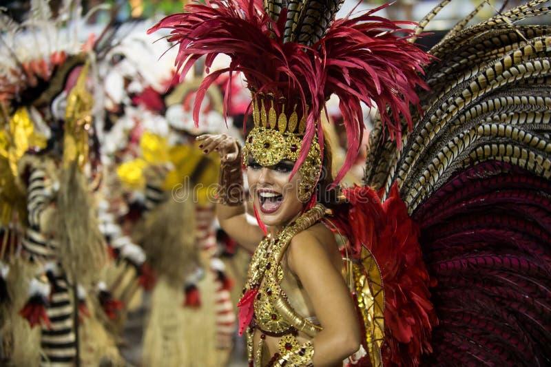 Καρναβάλι 2014 - Ρίο ντε Τζανέιρο στοκ εικόνα
