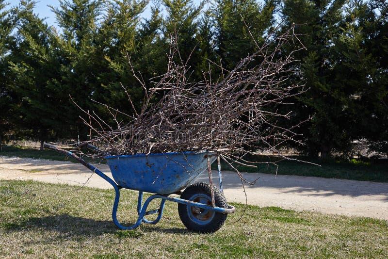 Καροτσάκι κήπων με τους κλάδους δέντρων μετά από την περικοπή στοκ φωτογραφία με δικαίωμα ελεύθερης χρήσης
