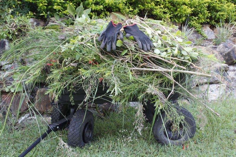 Καροτσάκι κήπων στοκ φωτογραφίες με δικαίωμα ελεύθερης χρήσης