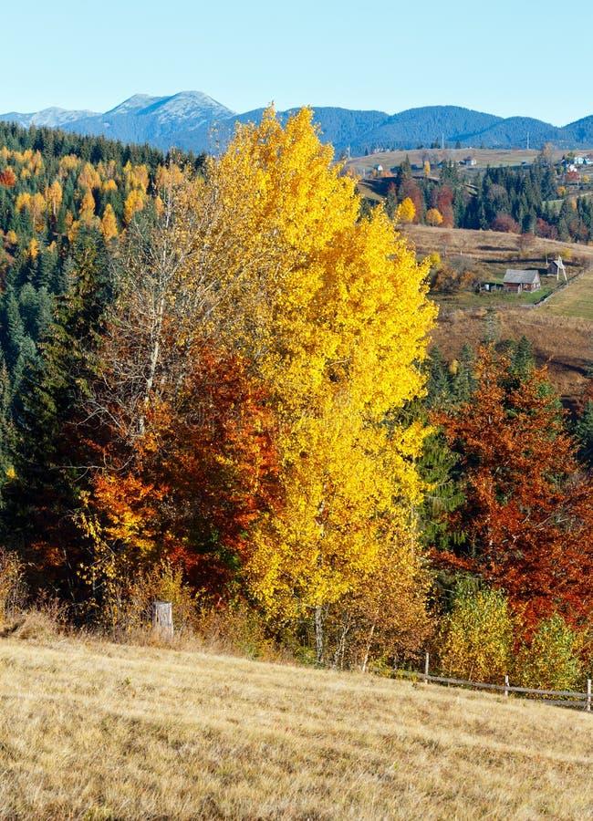 Καρπάθιο του χωριού τοπίο φθινοπώρου, Ουκρανία στοκ εικόνες με δικαίωμα ελεύθερης χρήσης