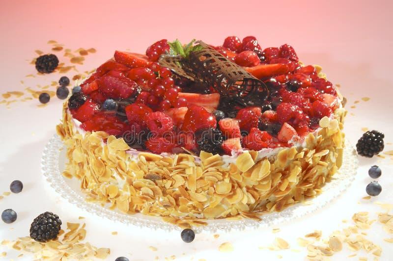 καρπός κέικ στοκ φωτογραφία με δικαίωμα ελεύθερης χρήσης
