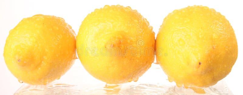 Καρπός - λεμόνι στοκ εικόνες
