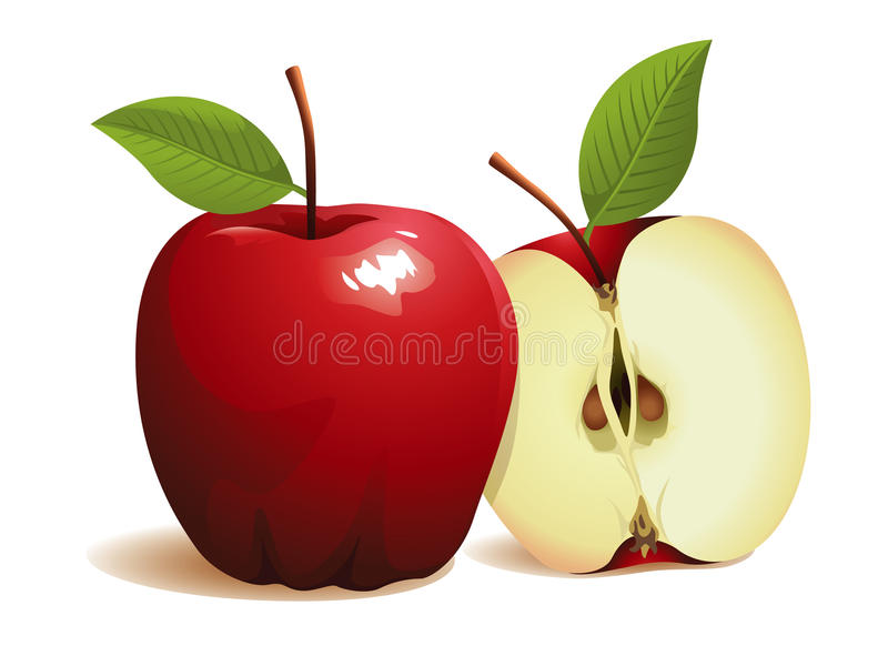 καρπός μήλων ελεύθερη απεικόνιση δικαιώματος