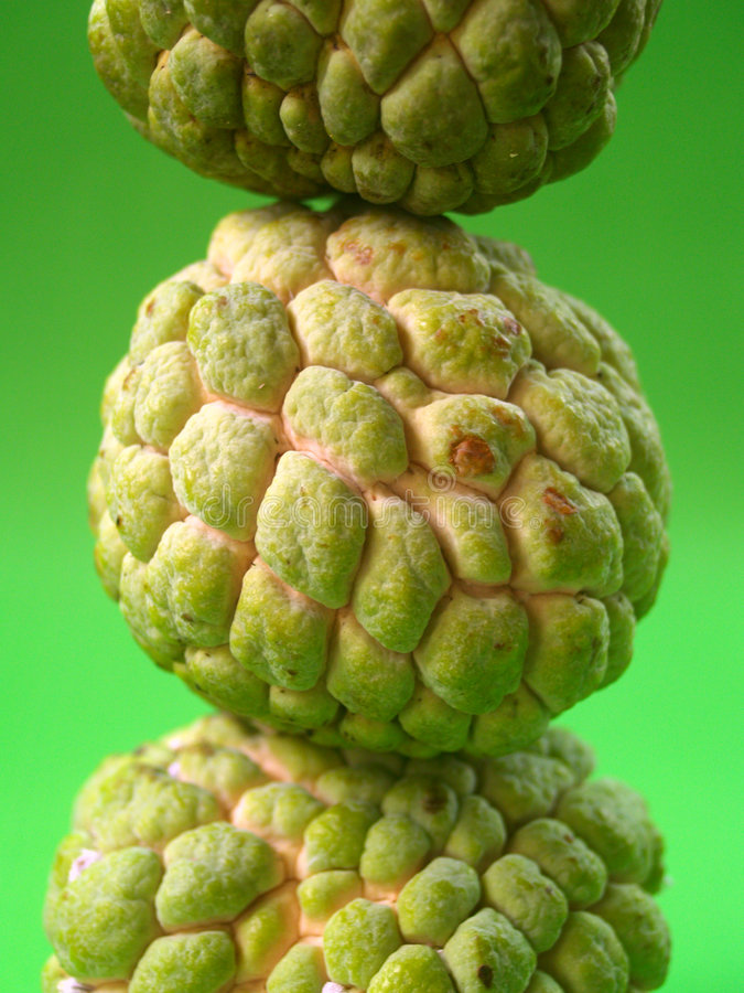 καρπός 4 πράσινος στοκ εικόνες