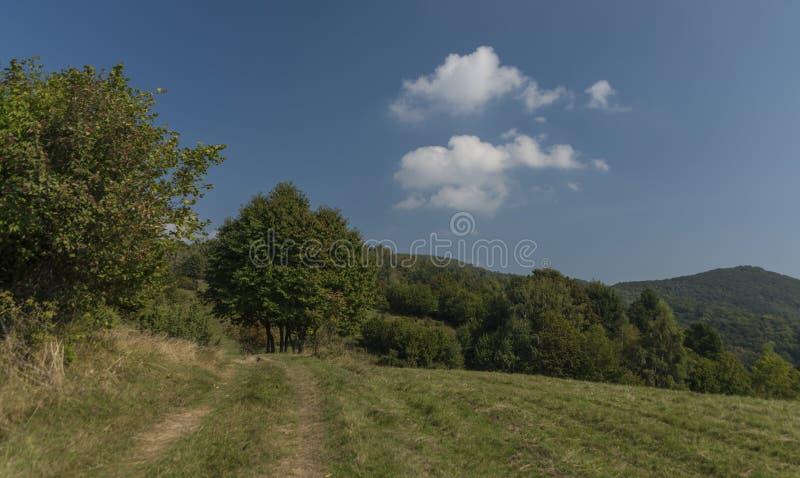 Καρστ της Σλοβακίας στη θερινή καυτή ημέρα στοκ εικόνα με δικαίωμα ελεύθερης χρήσης