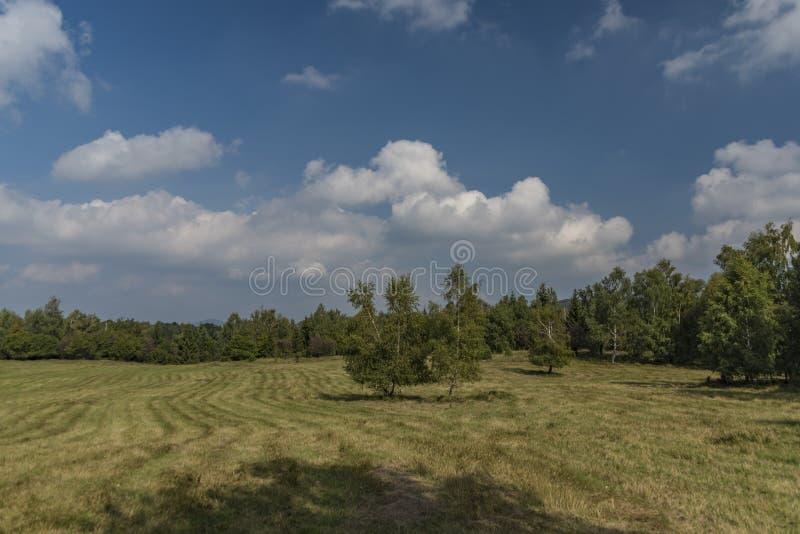 Καρστ της Σλοβακίας στη θερινή καυτή ημέρα στοκ εικόνες