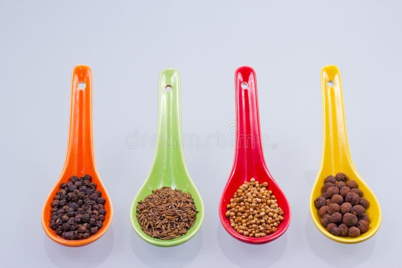 Καρυκεύματα στα χρωματισμένα κουτάλια στοκ φωτογραφία με δικαίωμα ελεύθερης χρήσης