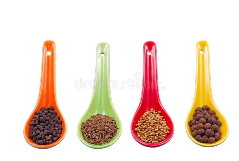 Καρυκεύματα στα χρωματισμένα κουτάλια στοκ εικόνες με δικαίωμα ελεύθερης χρήσης
