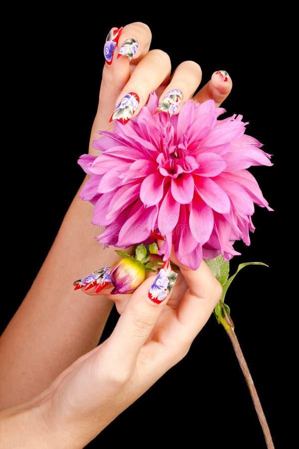 καρφιά λουλουδιών στοκ φωτογραφία