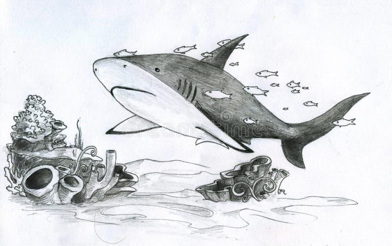 Καρχαρίας και ψάρια διανυσματική απεικόνιση