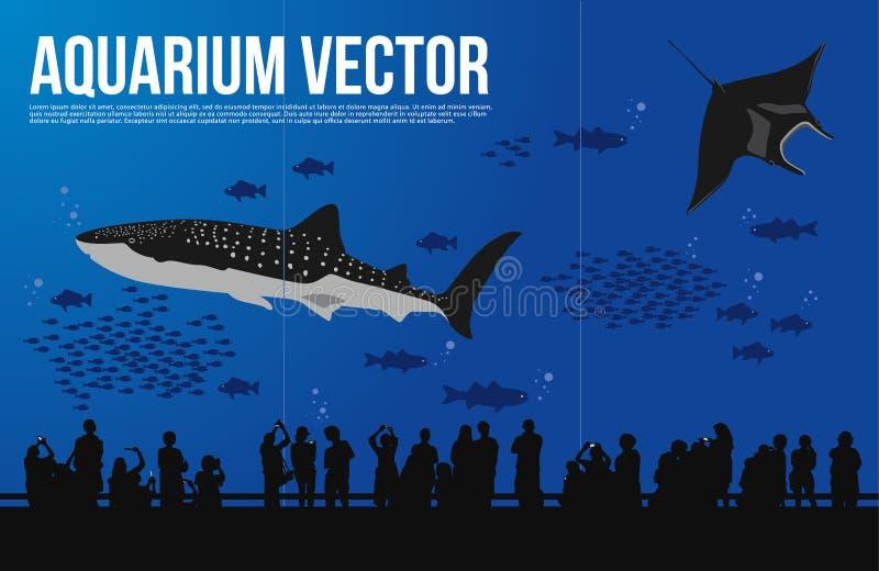Καρχαρίας φαλαινών στο διάνυσμα ενυδρείων διανυσματική απεικόνιση