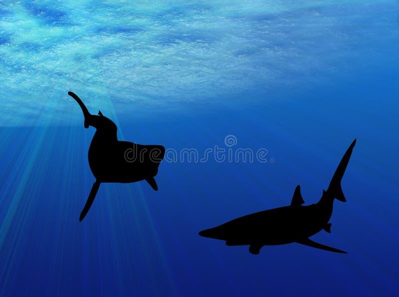 Καρχαρίες κάτω από το ύδωρ διανυσματική απεικόνιση