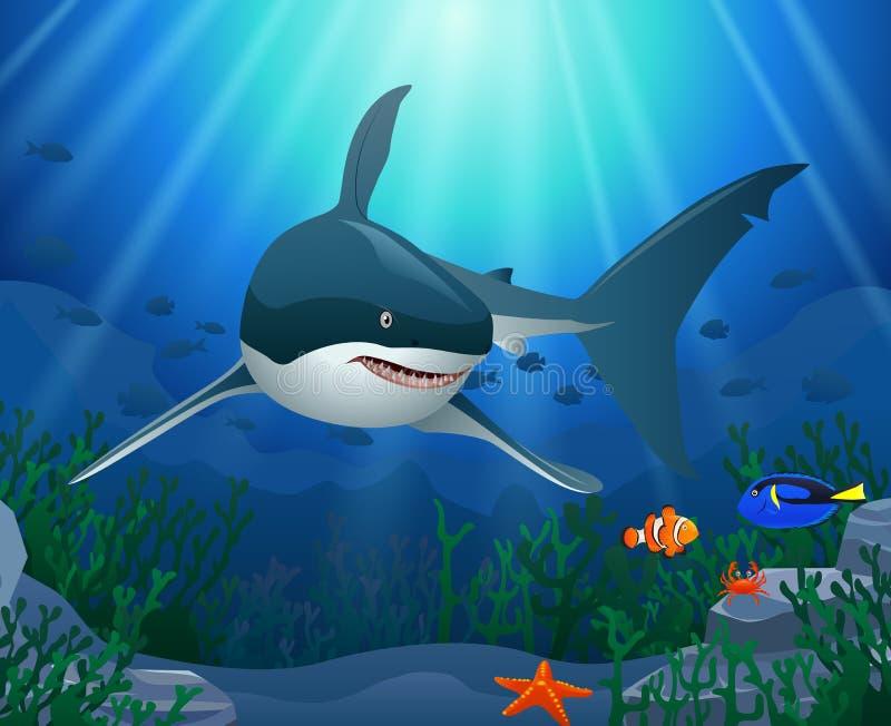Καρχαρίες και κοραλλιογενείς ύφαλοι στη θάλασσα απεικόνιση αποθεμάτων
