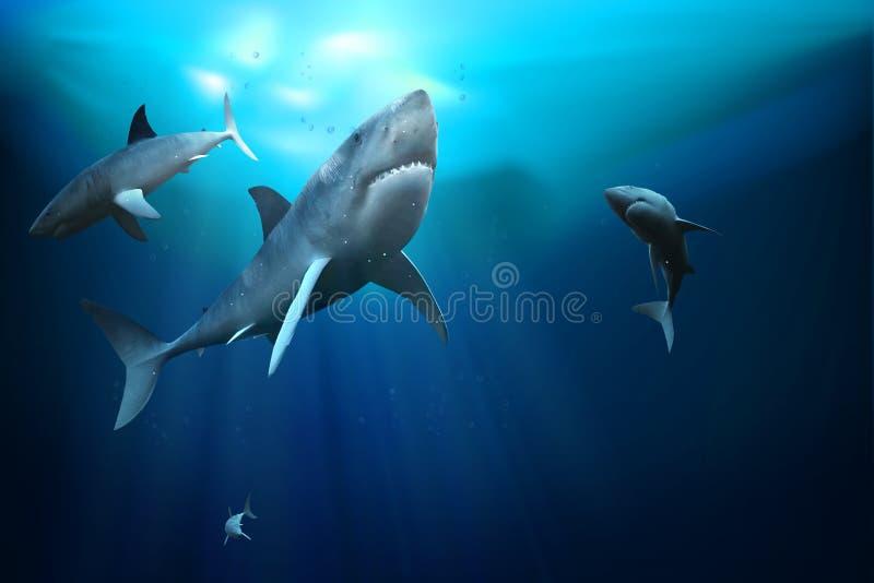 καρχαρίες τρισδιάστατη απεικόνιση ελεύθερη απεικόνιση δικαιώματος