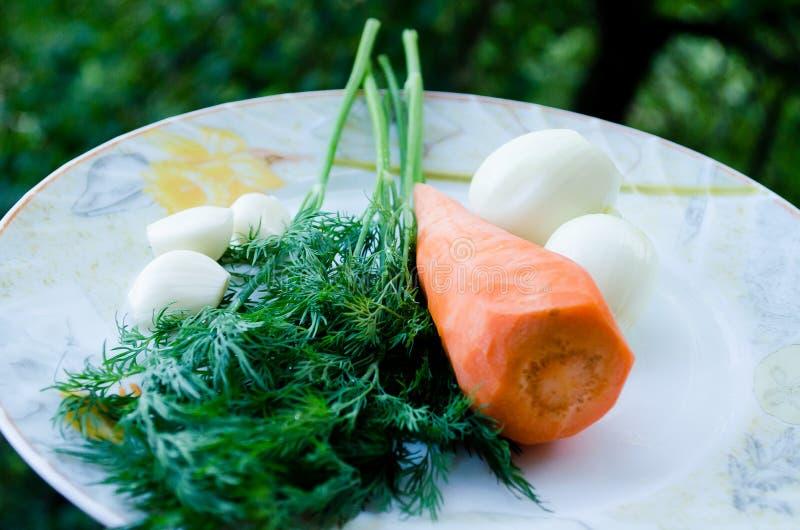 Καρότα, σκόρδο και άνηθος Πορτοκάλι και πράσινος Πράσινα και λαχανικό ρίζας o r Λαχανικά Φυσικό προϊόν στοκ εικόνα με δικαίωμα ελεύθερης χρήσης