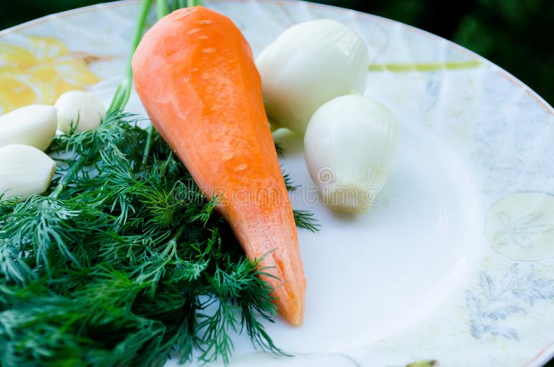 Καρότα, σκόρδο και άνηθος Πορτοκάλι και πράσινος Πράσινα και λαχανικό ρίζας o r Λαχανικά Φυσικό προϊόν στοκ φωτογραφίες με δικαίωμα ελεύθερης χρήσης