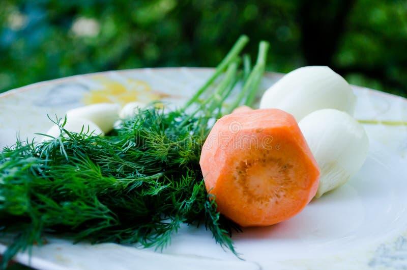 Καρότα, σκόρδο και άνηθος Πορτοκάλι και πράσινος Πράσινα και λαχανικό ρίζας o r Λαχανικά Φυσικό προϊόν στοκ φωτογραφία