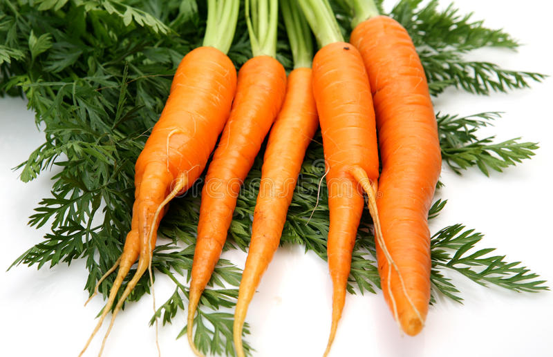 Download καρότα φρέσκα στοκ εικόνες. εικόνα από φυτικός, φυσικός - 17058362
