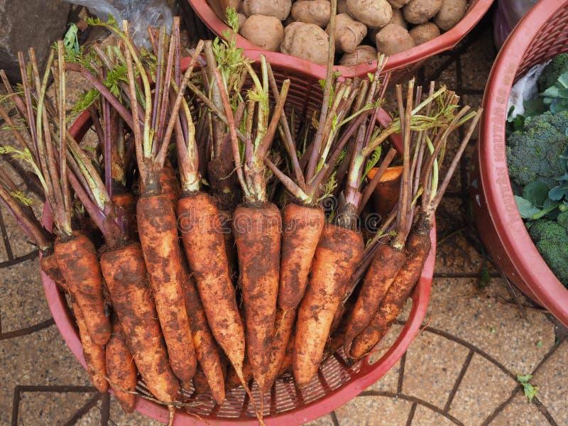 καρότα φρέσκα στοκ φωτογραφίες με δικαίωμα ελεύθερης χρήσης