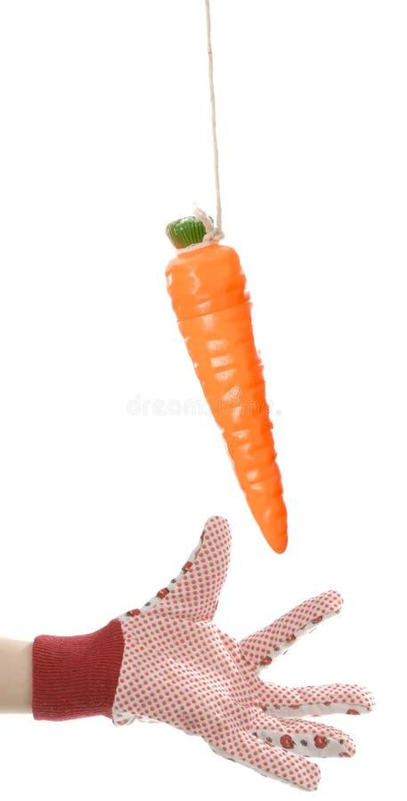 Download καρότο που φθάνει στη συμ& στοκ εικόνα. εικόνα από επίτευξη - 13175899