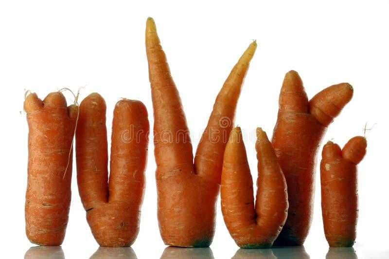 Download καρότο στοκ εικόνα. εικόνα από χορτοφάγος, στούντιο, αγρόκτημα - 398767