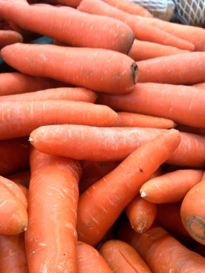 καρότο στοκ εικόνες