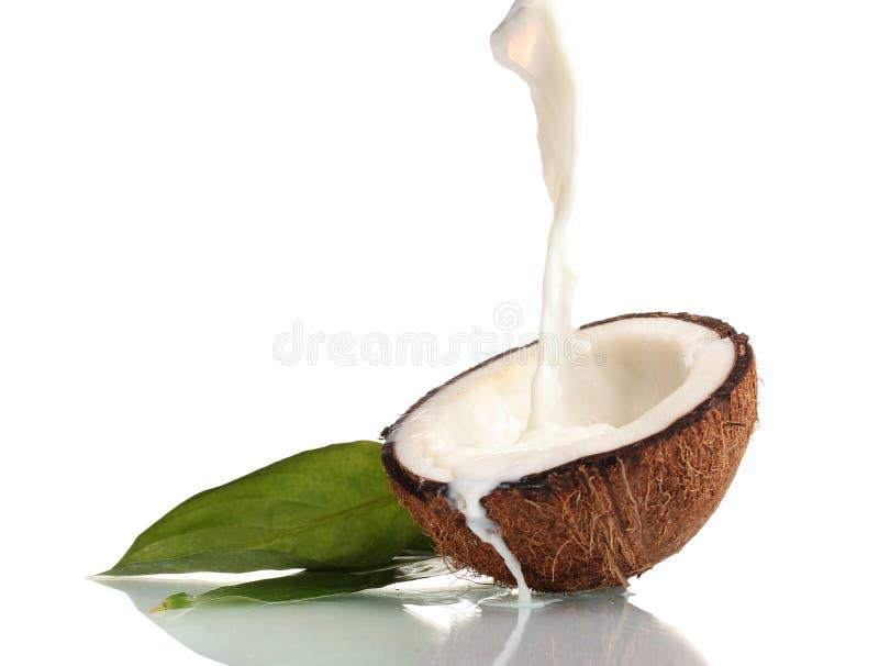 Καρύδα με το γάλα καρύδων στοκ εικόνες με δικαίωμα ελεύθερης χρήσης
