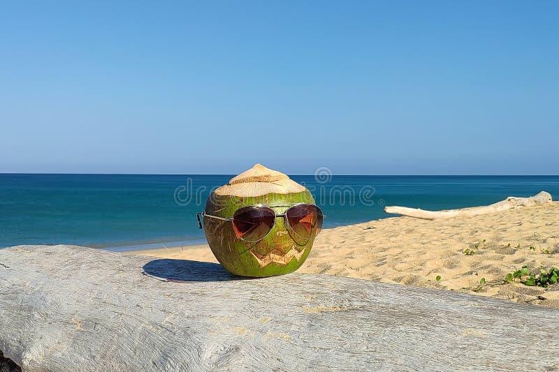 Καρύδα ως σύμβολο αποκριών Στην παραλία στα γυαλιά ηλίου στοκ εικόνες