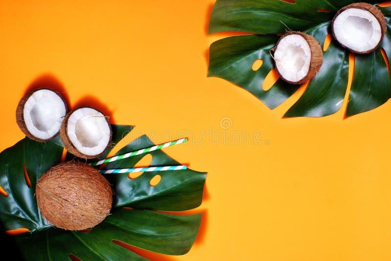 καρύδες και τροπικά φύλλα φυτών με πορτοκαλί φόντο Επίπεδο επίπεδο, επάνω όψη, αντιγραφή διαστήματος Υγιεινό μαγείρεμα στοκ εικόνα