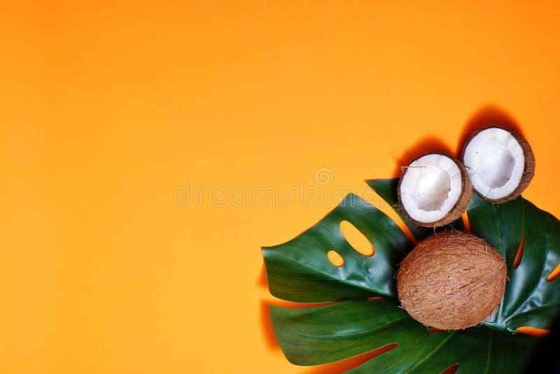 καρύδες και τροπικά φύλλα φυτών με πορτοκαλί φόντο Επίπεδο επίπεδο, επάνω όψη, αντιγραφή διαστήματος Υγιεινό μαγείρεμα στοκ φωτογραφία με δικαίωμα ελεύθερης χρήσης