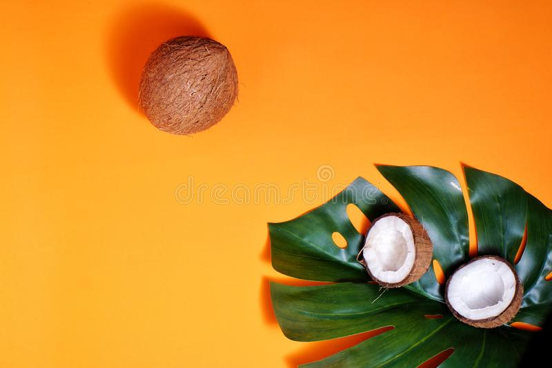 καρύδες και τροπικά φύλλα φυτών με πορτοκαλί φόντο Επίπεδο επίπεδο, επάνω όψη, αντιγραφή διαστήματος Υγιεινό μαγείρεμα στοκ φωτογραφίες με δικαίωμα ελεύθερης χρήσης
