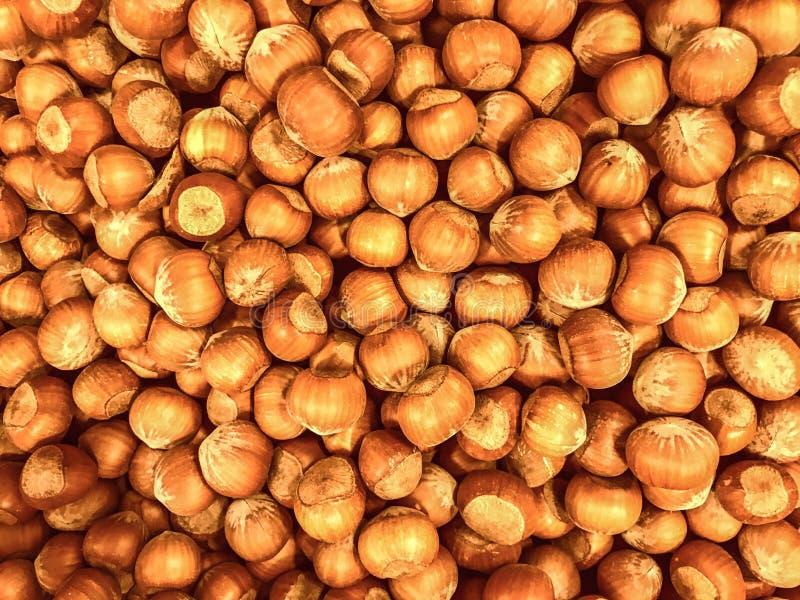 Καρύδια, Unshelled, λεπτοκάρυα, υπόβαθρο τροφίμων στοκ φωτογραφία με δικαίωμα ελεύθερης χρήσης