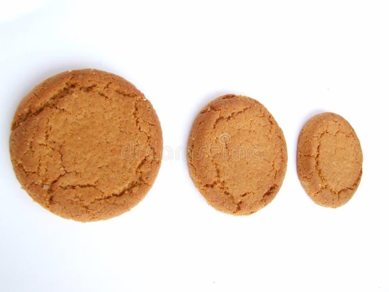 καρύδι πιπεροριζών μπισκότων στοκ εικόνα με δικαίωμα ελεύθερης χρήσης