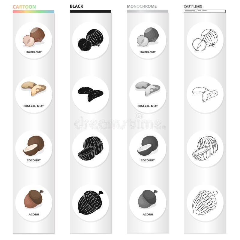 Καρύδι, φουντούκι, καρύδι της Βραζιλίας, και άλλο εικονίδιο Ιστού στο ύφος κινούμενων σχεδίων Η φλούδα, λιχουδιά, μεταχειρίζεται  απεικόνιση αποθεμάτων