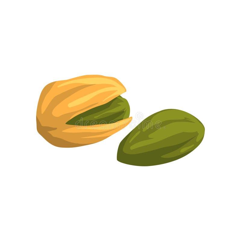 Καρύδι φυστικιών, θρεπτική διανυσματική απεικόνιση φυσικών προϊόντων σε ένα άσπρο υπόβαθρο ελεύθερη απεικόνιση δικαιώματος