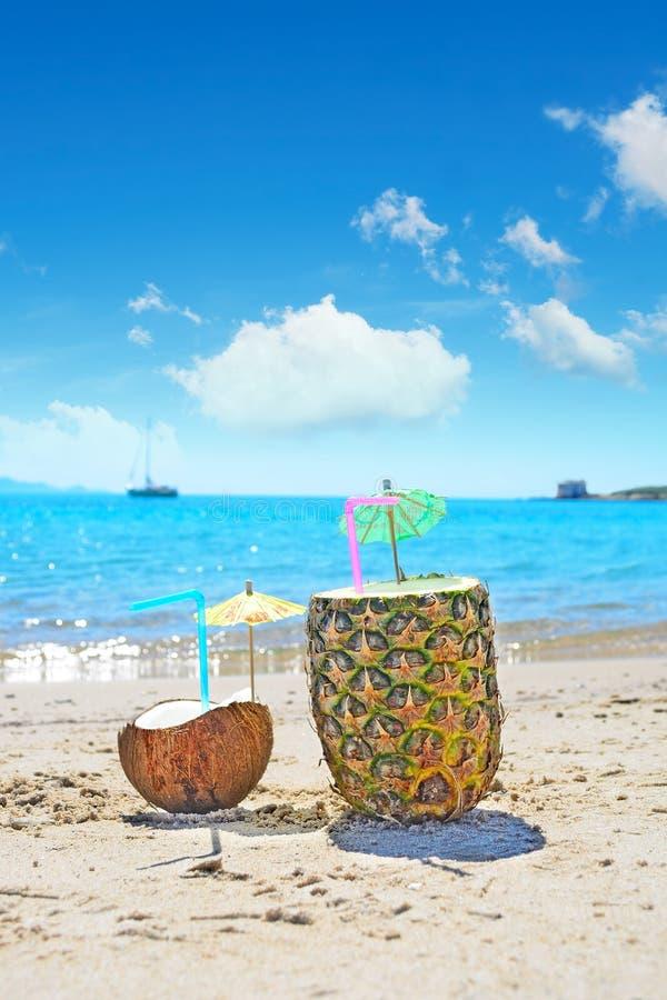 Καρύδα και ανανάς από την ακτή στοκ φωτογραφία με δικαίωμα ελεύθερης χρήσης
